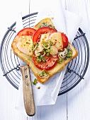 Toast mit Tomate, Paprika, Frühlingszwiebel und Mozzarella