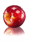 A red plum with water droplets