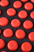 Freshly baked red macaroon halves on a slate surface