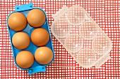 Sechs Eier im Eierbehälter