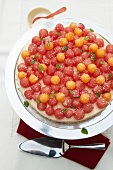 Cheesecake with melon balls