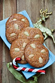 Nuremberg Lebkuchen (spiced, soft gingerbread) with almonds