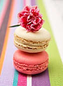 Two macaroons and a pink