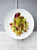 Autumn green salad with grapes and walnuts