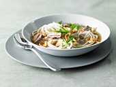 Beef soup with rice noodles, spring onions and peanuts (Asia)