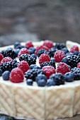 Forest berry-mascarpone cake