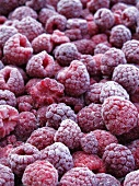 Lots of frozen raspberries