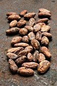 Lots of cocoa beans of the variety Criollo (organic) on a rusty surface