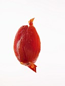 A tinned tomato without skin against a white background