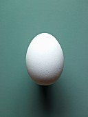 A white hen's egg