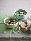 Cream of spinach soup with crispy prosciutto