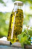 Home-made oregano oil