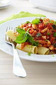 Rigatoni with tomato and vegetable sauce