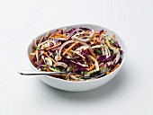 Coleslaw with a Honey Mustard Dressing