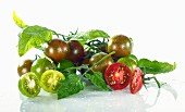 Green and red cherry tomatoes with water droplets