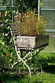 A chair with an old wine crate as a flower box
