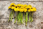 Dandelion flowers with stalks on wooden surface