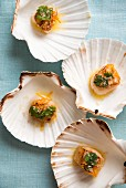 Baked scallops in the shell