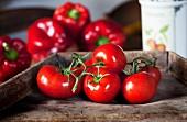 Knallig rote Tomaten und roter Paprika
