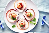 Steamed scallops, Asian style