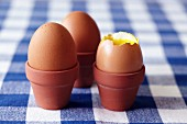 Boiled eggs in small flowerpots