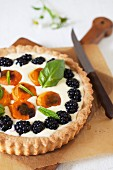 Apricot Blackberry Tart with Shortbread Crust and Basil Cream