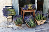 Bunches of lavender outside the entrance to a house