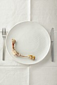 Chicken bones on a white plate