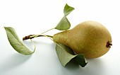 A pear with leaves