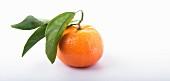 Eine Mandarine mit Mandarinenblättern