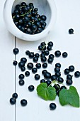 Blackcurrants in a marble bowl and on a table