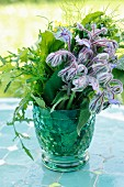 A bunch of herbs with borage in a glass of water