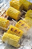 Grilled corn on the cob on aluminium foil