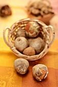 Fresh mushrooms in a basket
