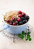 Whitecurrants, gooseberries, blackberries and cherries in an enamel pot