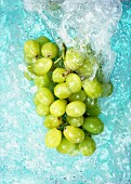 Green grapes in water