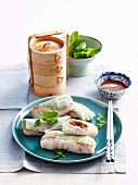 Oodles of noodles Teriyaki beef rice paper rolls
