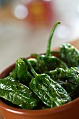 Fried poblano peppers