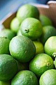 Lots of limes in a crate