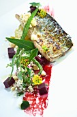 Mackerel with white chocolate and beetroot