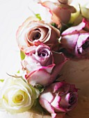 Wedding cake with rose decoration (close-up)