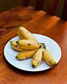 A Bunch of Baby Bananas on a White Plate