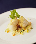 Monkfish on finely diced peppers and courgettes