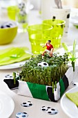 Cress as a table decoration and as a seasoning with football decorations