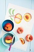 Fresh peaches and drawings of peaches