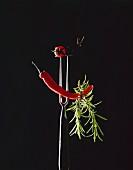 Chili, Rosmarin, Tomate & Olive aufgespiesst auf Fleischgabel
