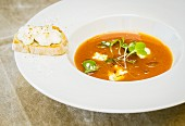 Apricot soup with goat cheese crisp and cress