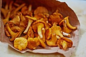 Fresh chanterelles in a brown paper bag