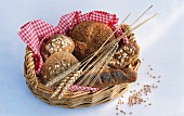 Assorted wholemeal rolls in a bread basket