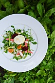 A Pea Shoot Salad with Pickled Vegetables